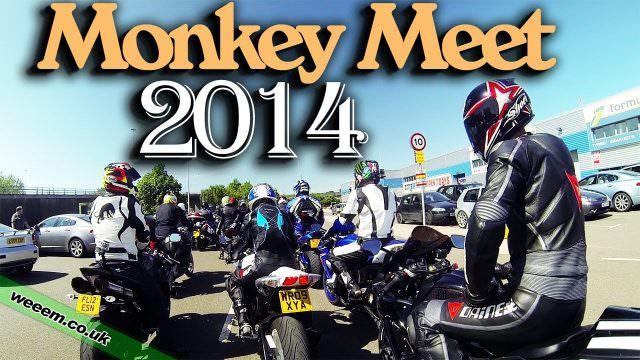 Monkey Meet 2014