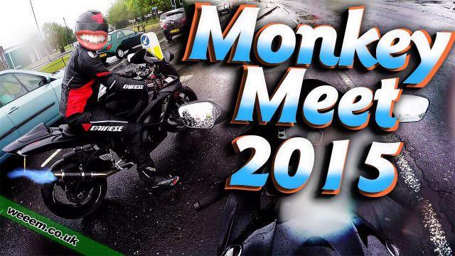 Monkey Meet 2015