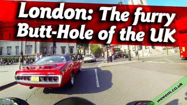 The furry Butt-Hole of the UK